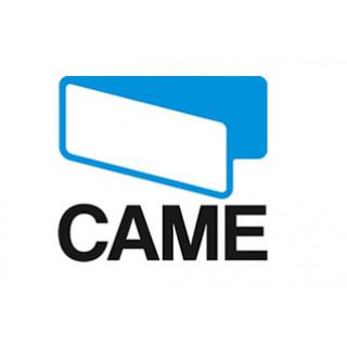 Came (Италия)